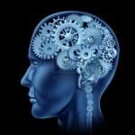 brain activity 2