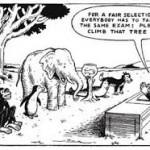 Don't expect a fish to climb a tree.